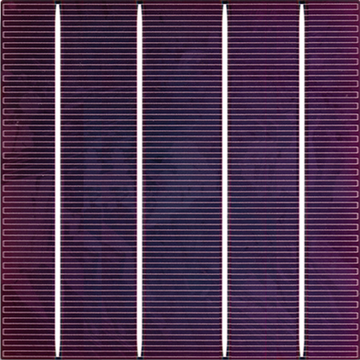 樂福彩色太陽電池_Lavender Color Solar Cell